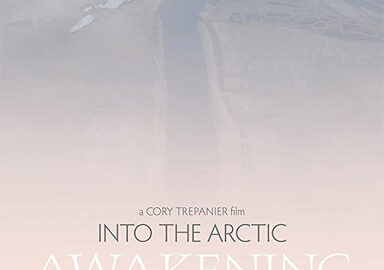 Into The Arctic: Awakening